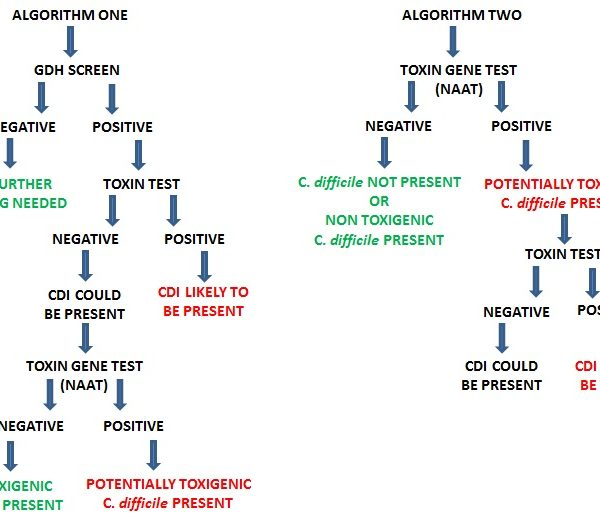 Clostridium difficile Algorithm