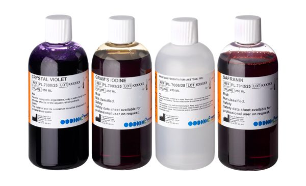 Gram Staining Kit (Safranin) (4 x 250.0ml)-0